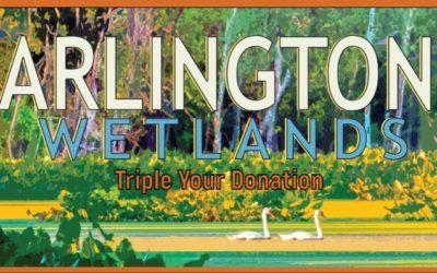 Triple Your Donation: Arlington Wetlands Challenge Grant
